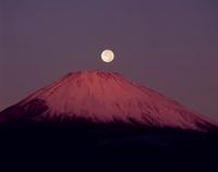 御殿場市 新橋 朝焼けの富士山と月