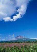 梨ヶ原 青空と富士山 11002058787| 写真素材・ストックフォト・画像・イラスト素材|アマナイメージズ