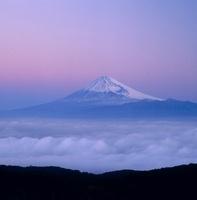 伊豆市 達磨山高原 朝焼けと富士山