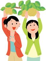 梨狩りを楽しむ若い女性2人 11002067771  写真素材・ストックフォト・画像・イラスト素材 アマナイメージズ