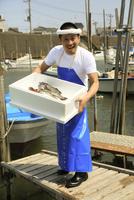 港でトロ箱を抱える鮮魚店店員
