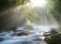 森林と渓流