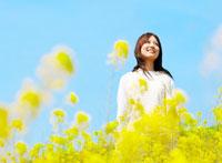 菜の花畑と日本人女性