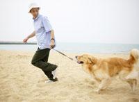 砂浜で犬と日本人の若者