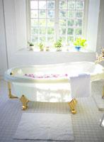 お風呂に浮く花びら