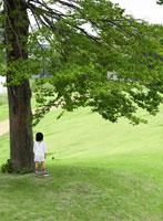 大木と日本人の女の子