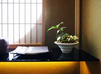 障子と植物