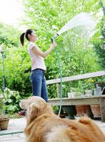 水を撒く女性と犬
