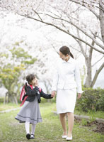 桜並木を手を繋いで歩く母親と女の子