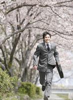 桜並木を走るビジネスマン