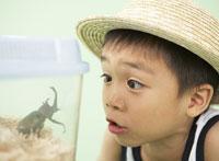 虫かごを覗く男の子 11004028170| 写真素材・ストックフォト・画像・イラスト素材|アマナイメージズ