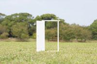 緑の中に立つ白いドア