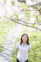 桜の木を見上げる日本人女性