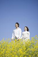 菜の花畑でたたずむカップル