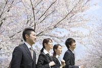 桜の木の前に立つ新入社員