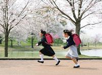 桜の花と走る新入生の女の子達
