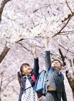 桜の花と新入生の子供達