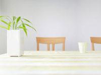 テーブルの上の観葉植物 11004083277  写真素材・ストックフォト・画像・イラスト素材 アマナイメージズ