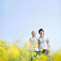 菜の花畑で笑うカップル