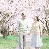 桜並木の下で手をつなぐシニア夫婦