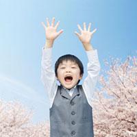 両手を挙げる小学生と桜