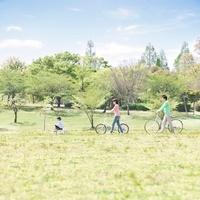 自転車に乗る家族