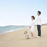 砂浜に立つ日本人カップルと犬