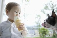 犬とソフトクリームを舐める男の子 11004099987| 写真素材・ストックフォト・画像・イラスト素材|アマナイメージズ