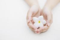 花を持つ両手