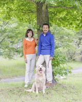 犬を連れて木の下に立つ中高年夫婦