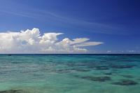 エメラルドグリーンの海とサンゴ 来間島