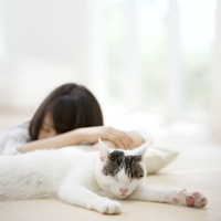 眠る猫と女性のシルエット