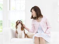 ソファに座る犬を撫でる女性