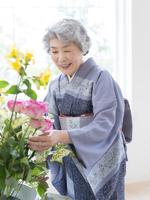 花を生ける着物姿のシニア女性