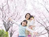 桜と笑顔の親子