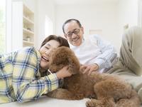 犬を撫でるシニア夫婦