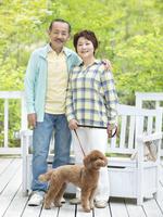 日本人のシニア夫婦とトイプードル