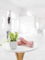 テーブルの上のダンベルと観葉植物