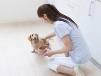 犬にエサを与える女性