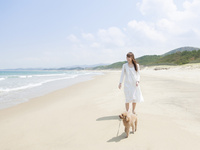 浜辺でトイプードルと散歩する女性
