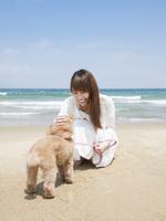 浜辺でトイプードルを撫でる女性