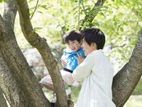 木登りをして遊ぶ父と息子