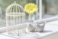 窓辺に置かれた鳥籠と鳥のオブジェ