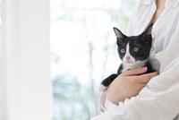 猫を抱いた女性 11004120830| 写真素材・ストックフォト・画像・イラスト素材|アマナイメージズ