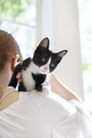 猫を抱いた女性 11004120832| 写真素材・ストックフォト・画像・イラスト素材|アマナイメージズ