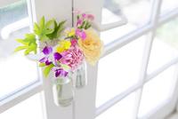 ドアにかけられた花のイメージ 11004120978| 写真素材・ストックフォト・画像・イラスト素材|アマナイメージズ