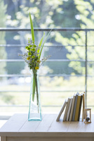 窓辺の花 11004120982  写真素材・ストックフォト・画像・イラスト素材 アマナイメージズ