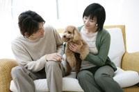ソファで犬と遊ぶセーターの男女 11006002743| 写真素材・ストックフォト・画像・イラスト素材|アマナイメージズ