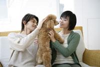ソファで犬と遊ぶセーターの男女 11006002753| 写真素材・ストックフォト・画像・イラスト素材|アマナイメージズ