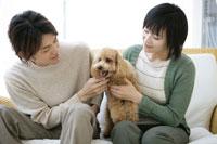 カップルと犬 11006003610| 写真素材・ストックフォト・画像・イラスト素材|アマナイメージズ